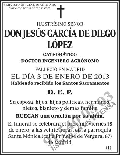 Jesús García de Diego López